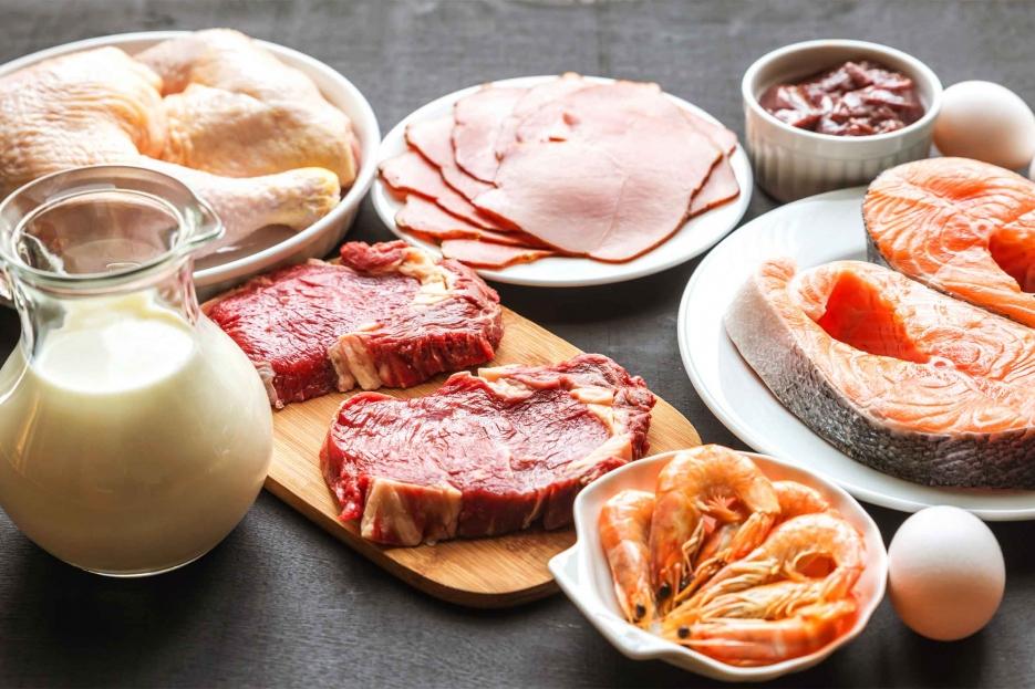 белково жировая диета для похудения меню